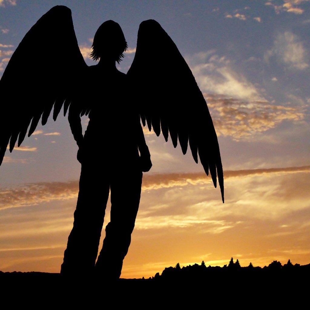 картинки со спины ангел мужчина полководец