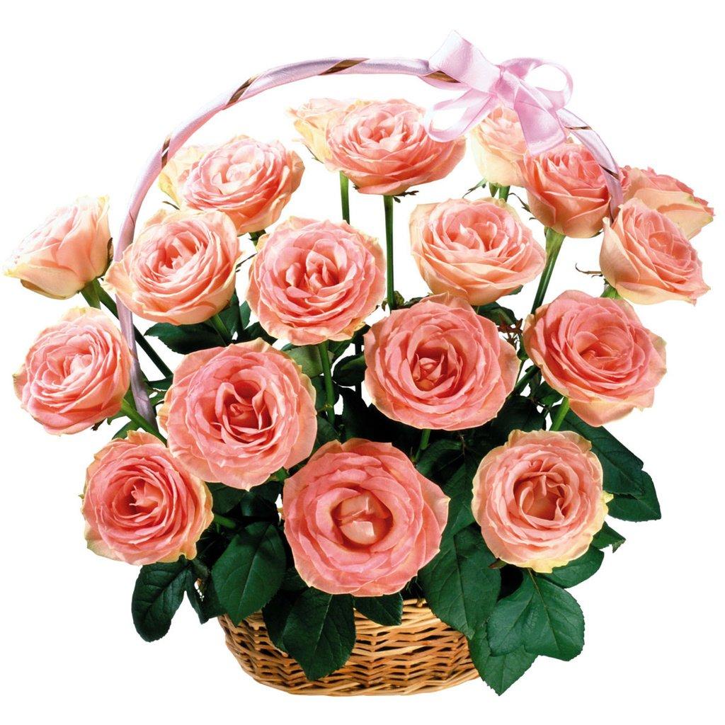 Открытки роз для ссылки, картинки надписями