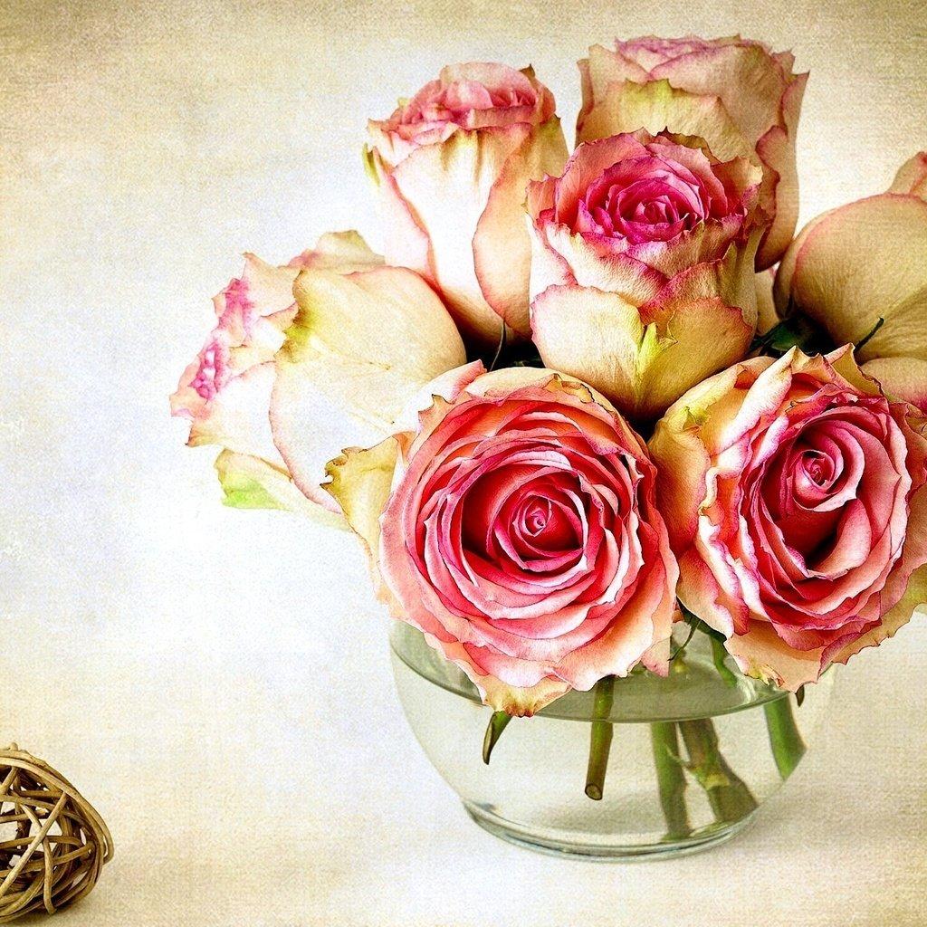 кабинете обои на телефон розы в вазе последнее время