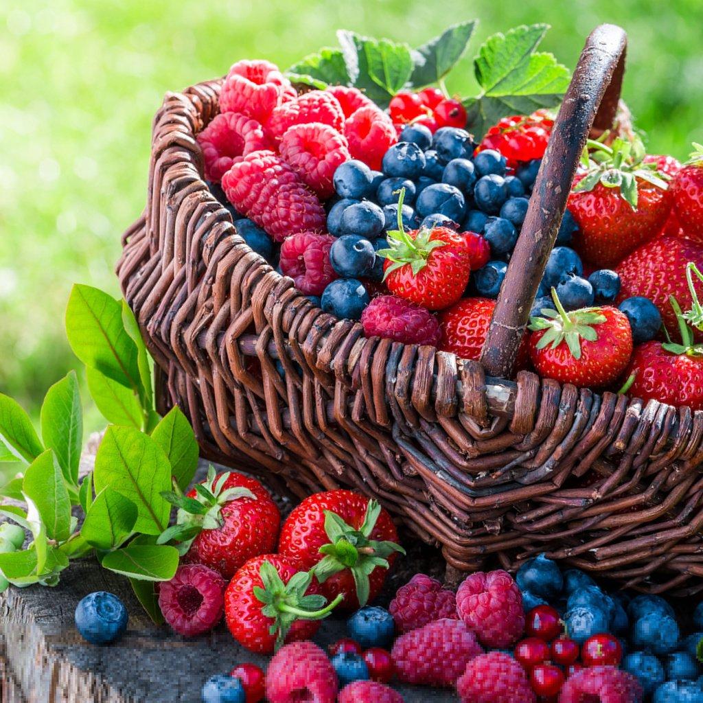 Ягоды и фрукты в картинках