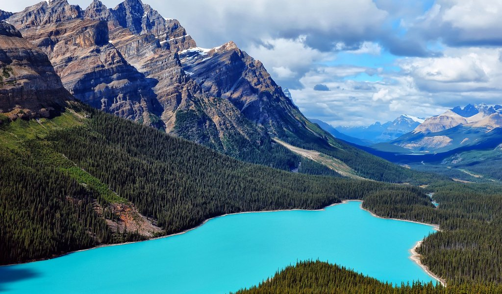 nature canada essay In this lesson, students explore relevant environmental issues and gather information to write persuasive essays persuasive essay: environmental issues.