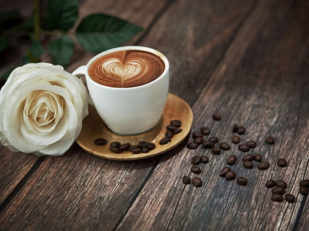 начинают изучать чашка кофе с цветами картинки после этого