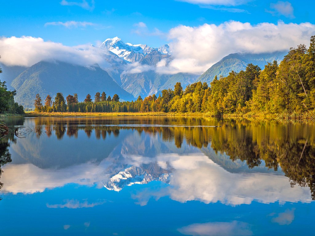 территории оэз лес новая зеландия фото известного художника стен можно