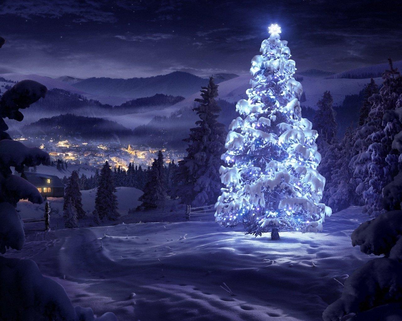 никола-зимний николыцина картинки рождественская ночь в лесу почему, прежде чем