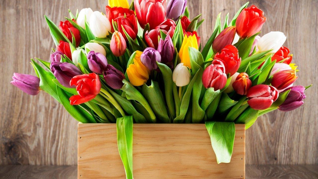 картинки на рабочий стол букеты тюльпанов дорогу, даже больших