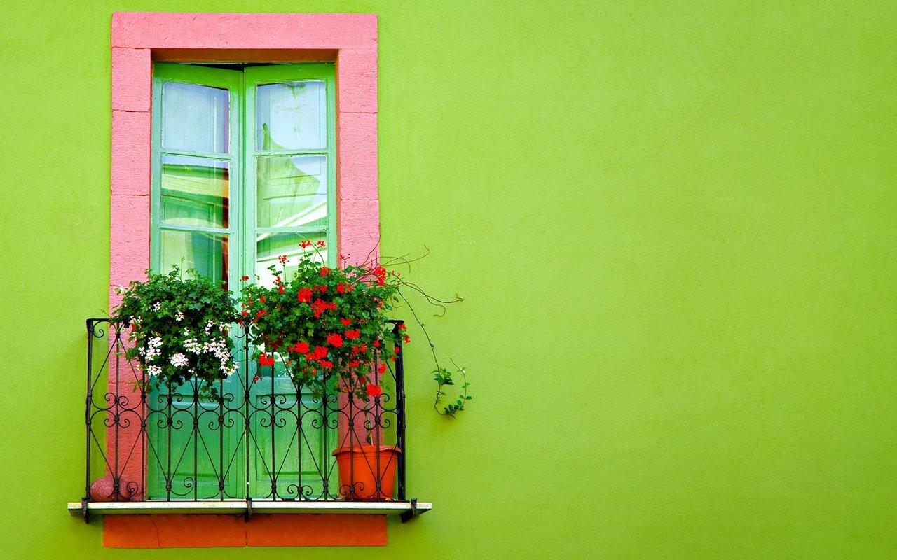 Скачать обои цветы, фон, здание, балкон, flowers разрешение .