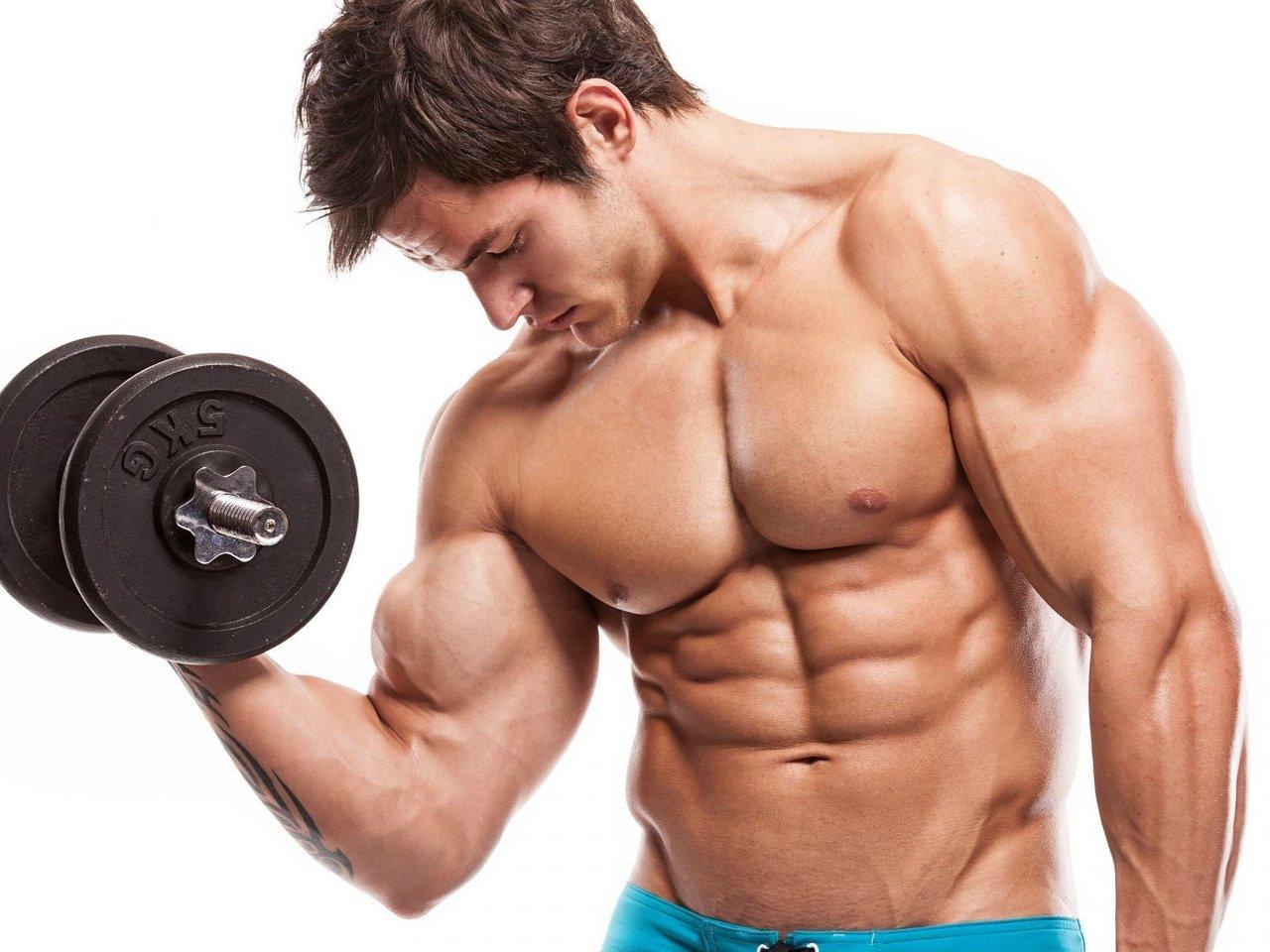 Как нарастить мышечную массу в домашних условиях на руках