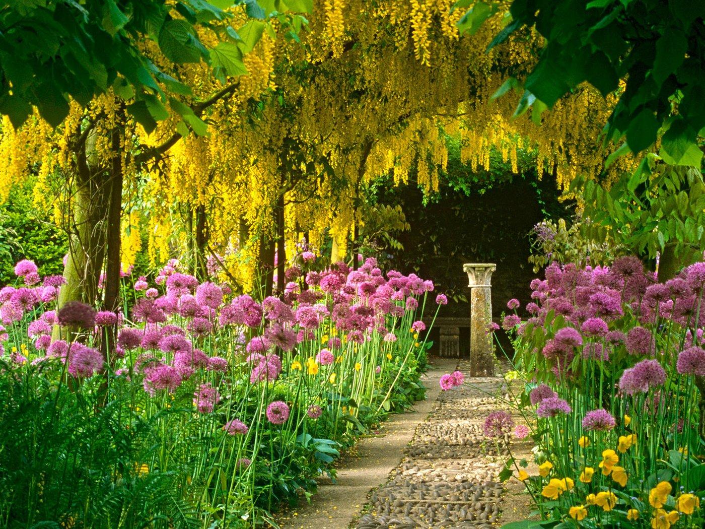 Для поздравления, картинки сада с цветами и деревьями