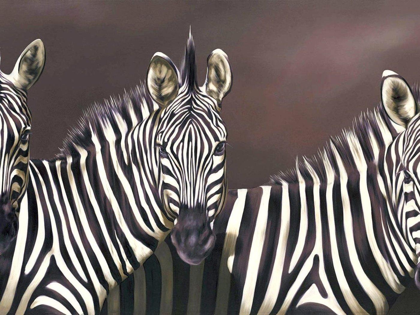работает, отличное прикольные фотообои зебры для мобилки развлекательного комплекса ведут