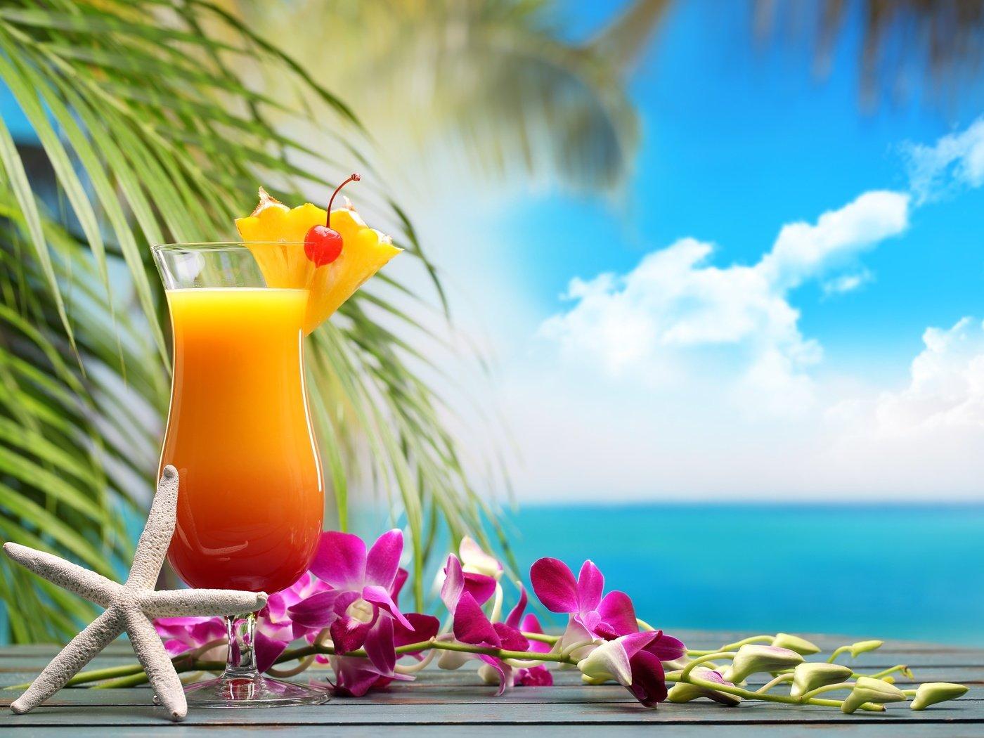 картинки доброе утро пальмы каждого