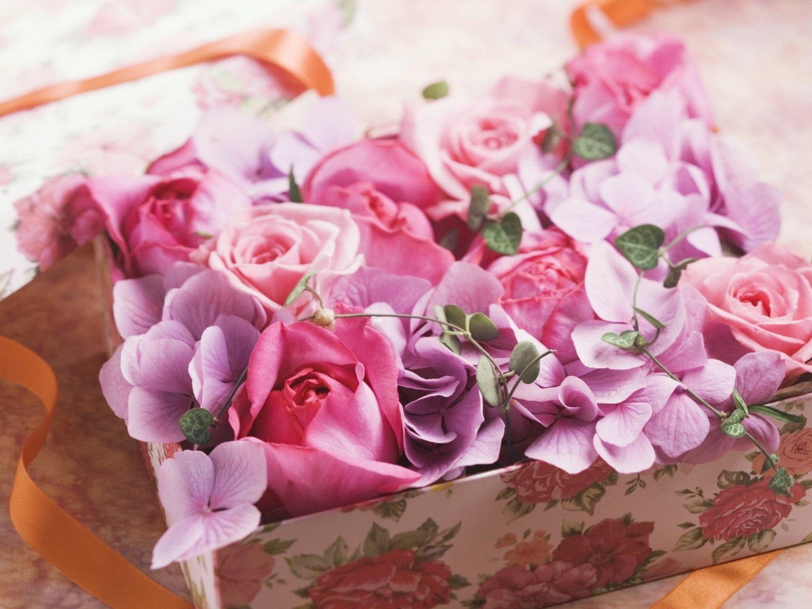 Картинка подарок девушке цветы, смешные прикольные