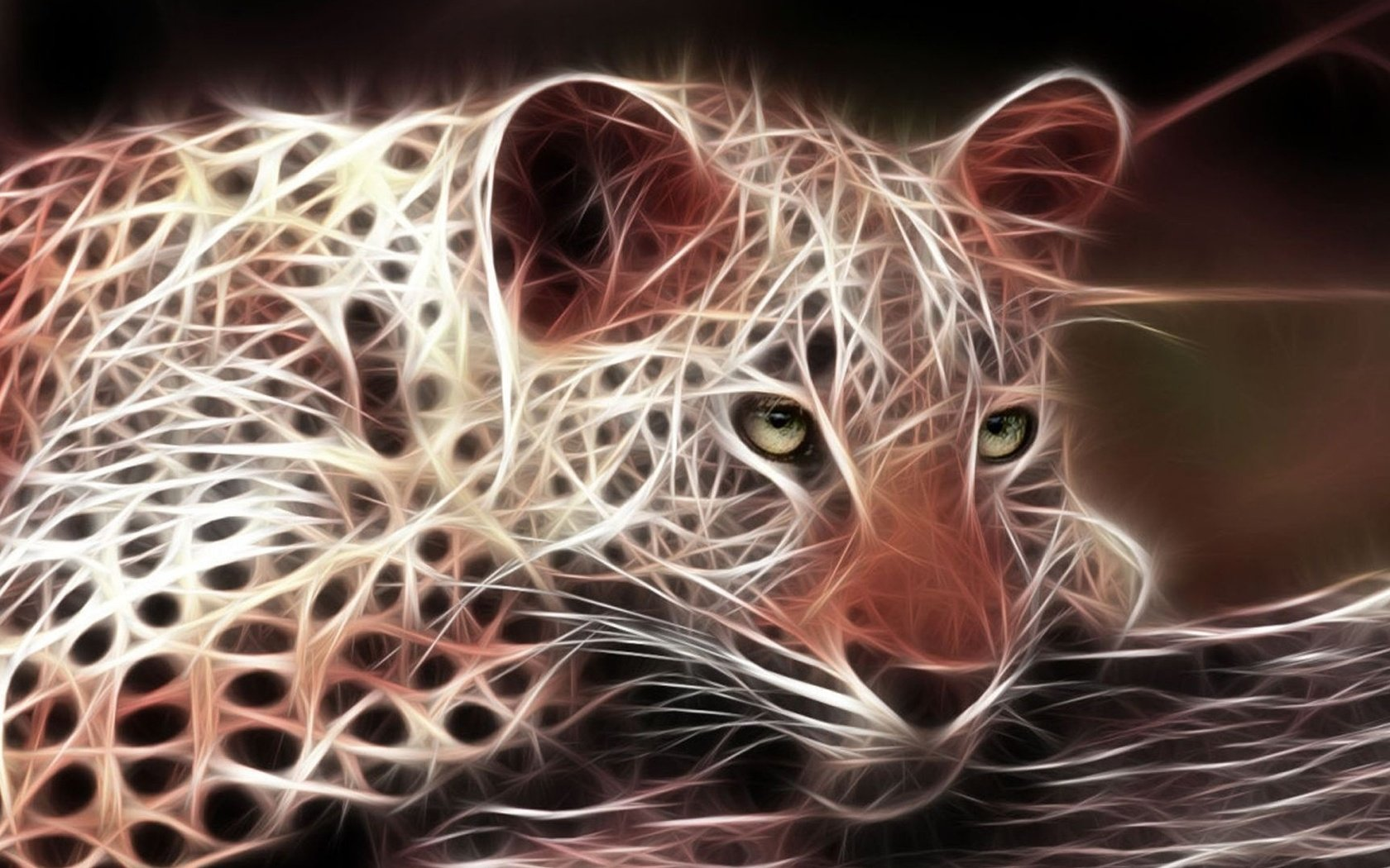 3d wallpapers hd animals - photo #2