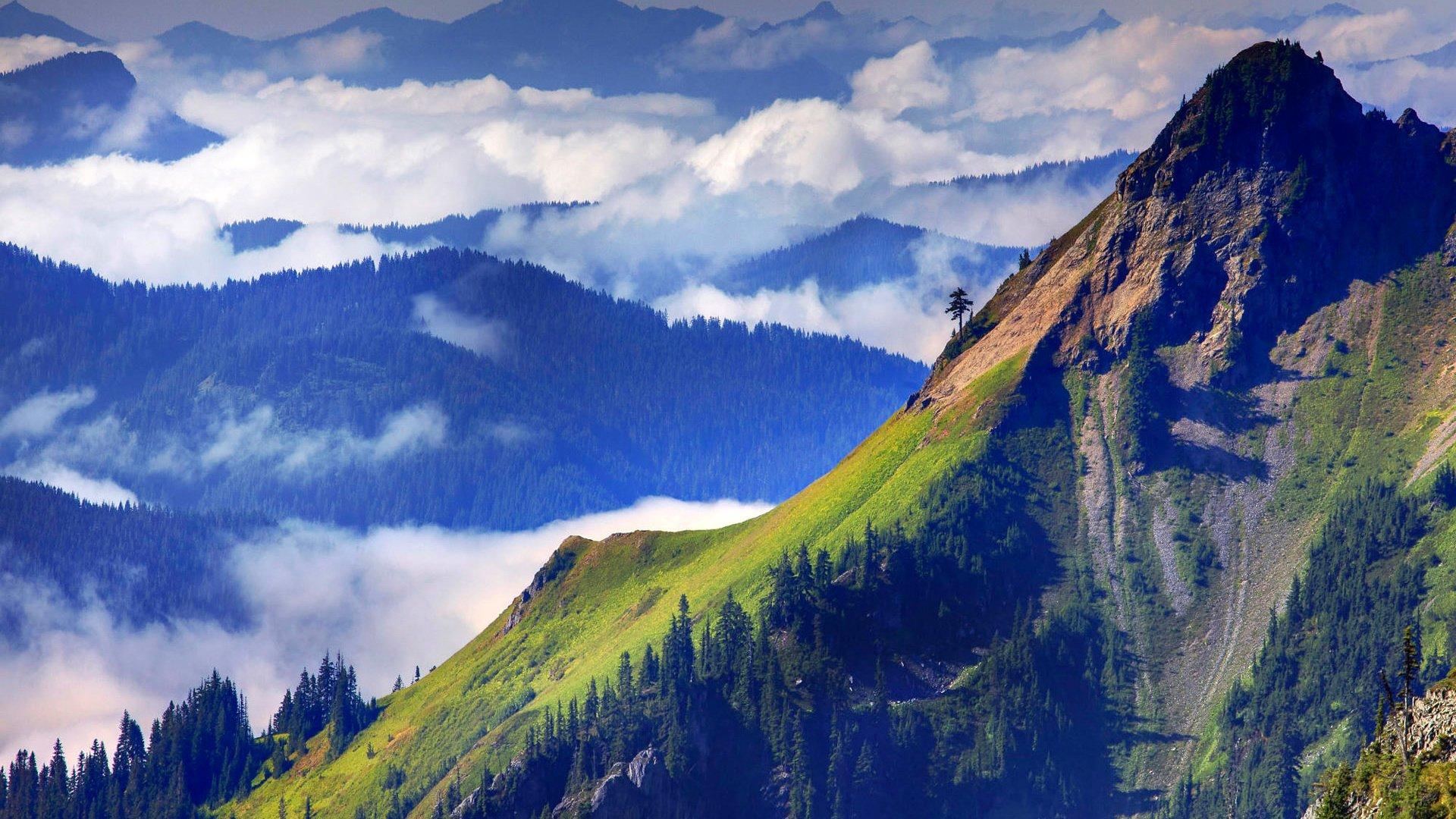туман ущелье скалы горы скачать