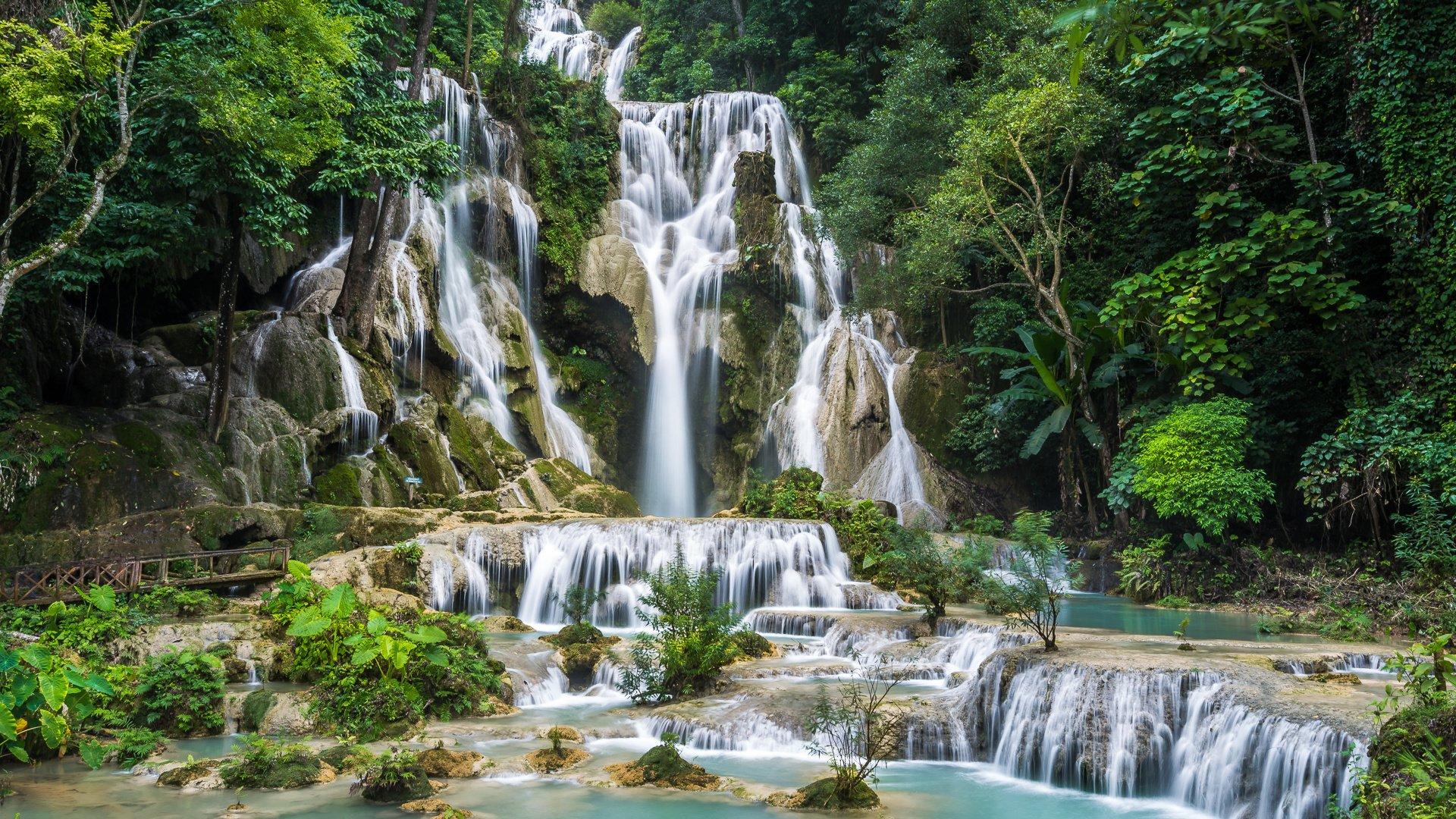 делаете блюдо природа раскраска и фото деревья водопады монополия легко