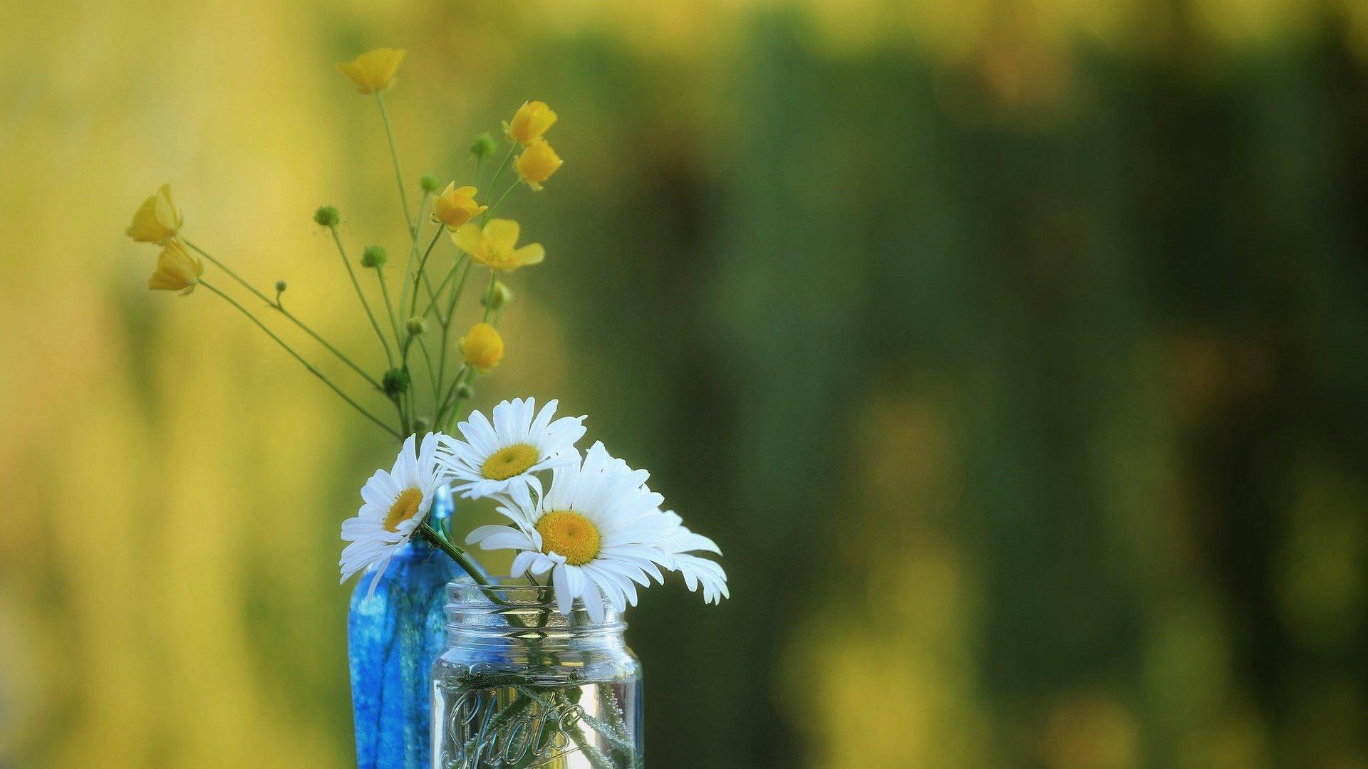 Цветочек в банке подборки