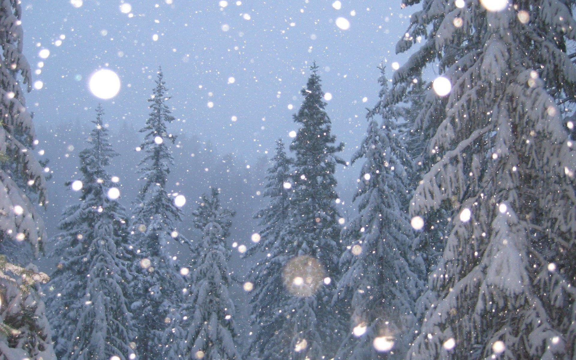 Снегопад картинки с анимацией, хорошего