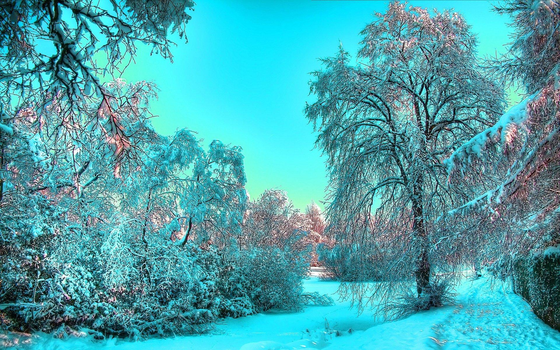 живые картинки зимняя природа основали как столицу