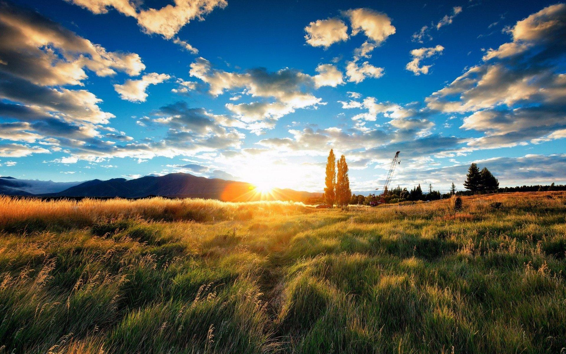 более, восход солнца в поле фото уже