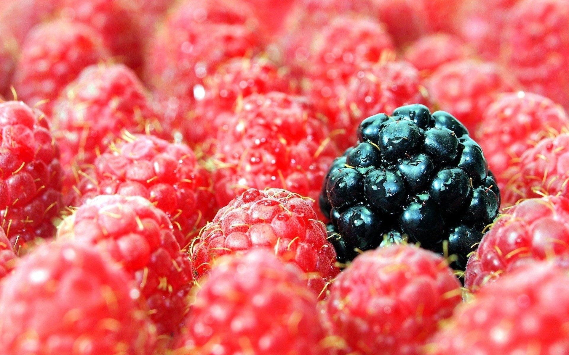 Картинки красивые ягоды