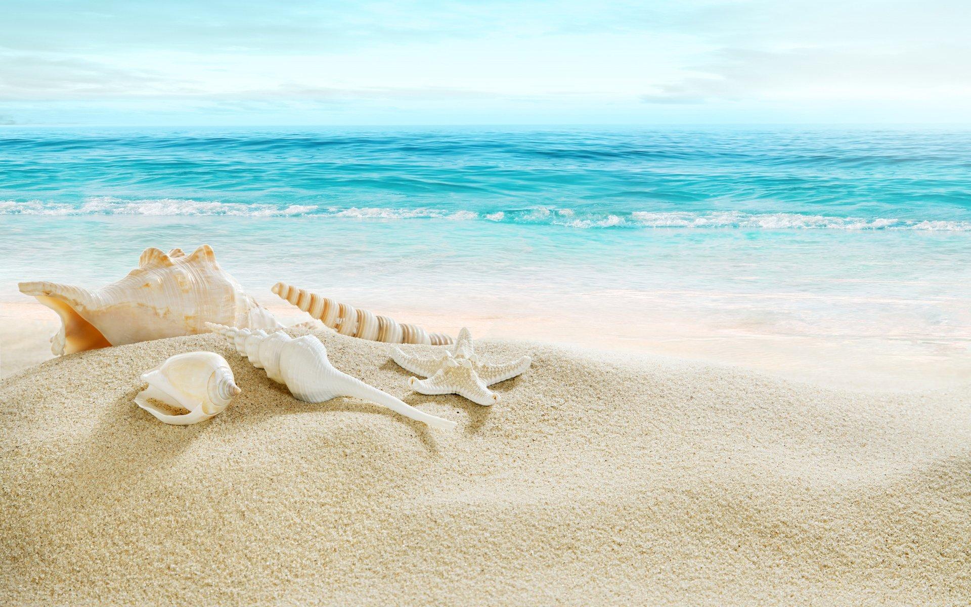 природа горизонт море морская звезда  № 623109  скачать