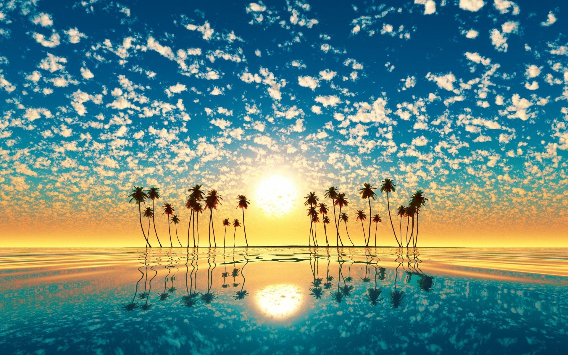 высоком картинки теплого моря и яркого солнца изготовления кувшинки пластиковых