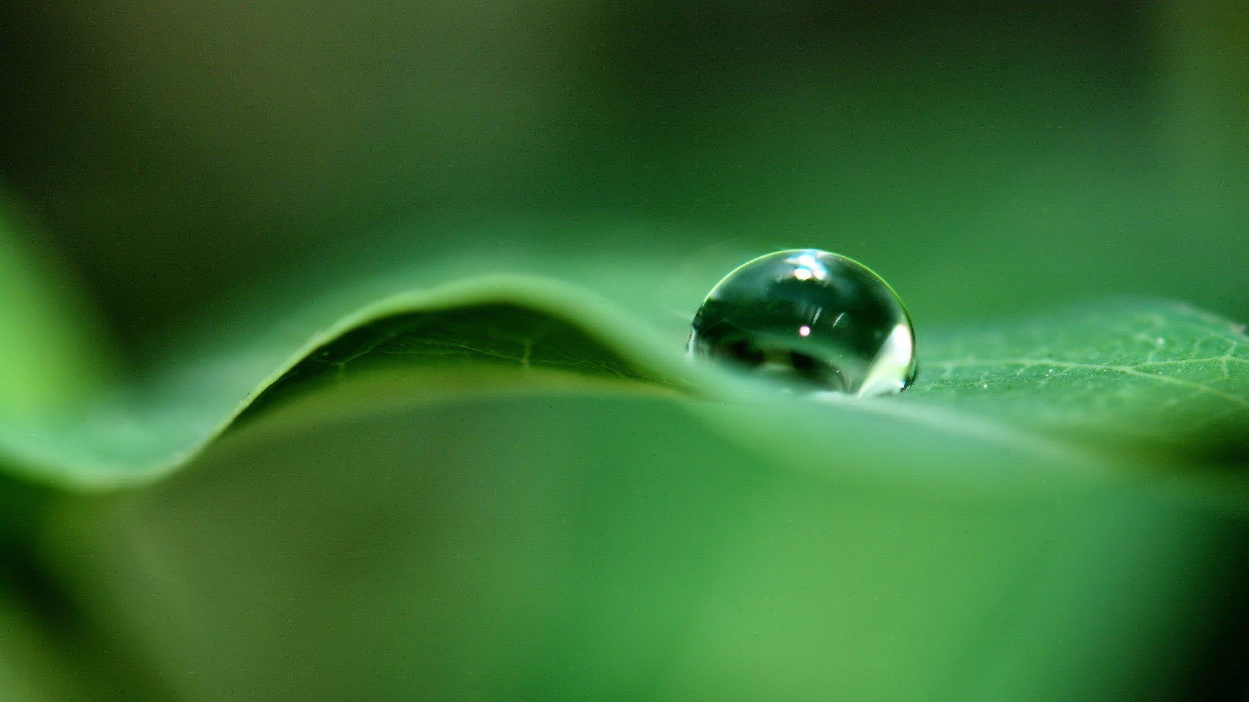 природа вода капля nature water drop  № 2047576 загрузить