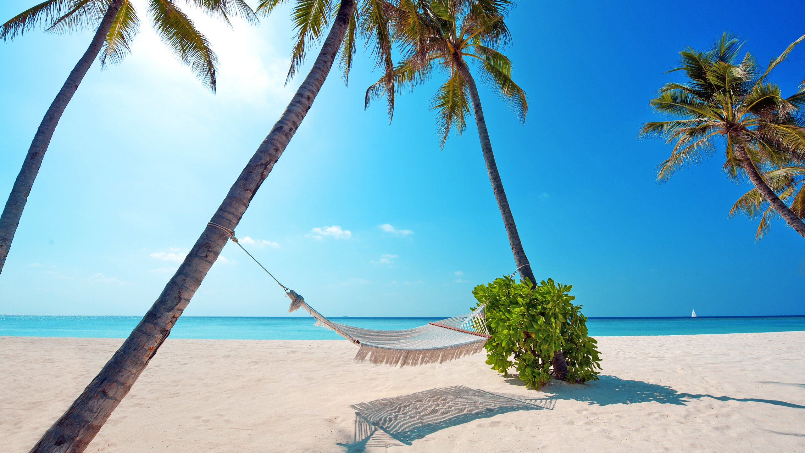 Фото море пляжи отдых