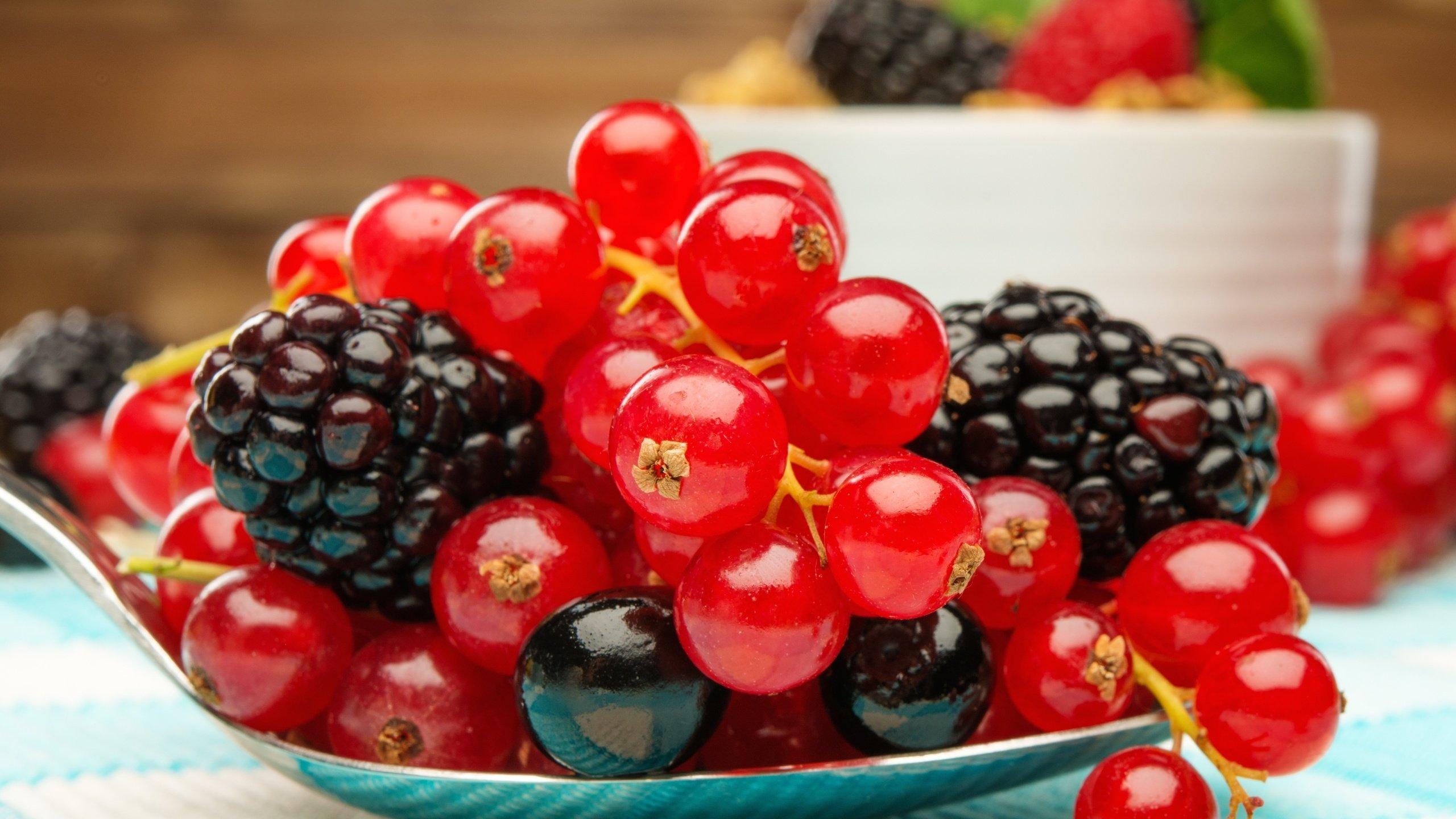 Лесные ягоды  № 2169750 бесплатно