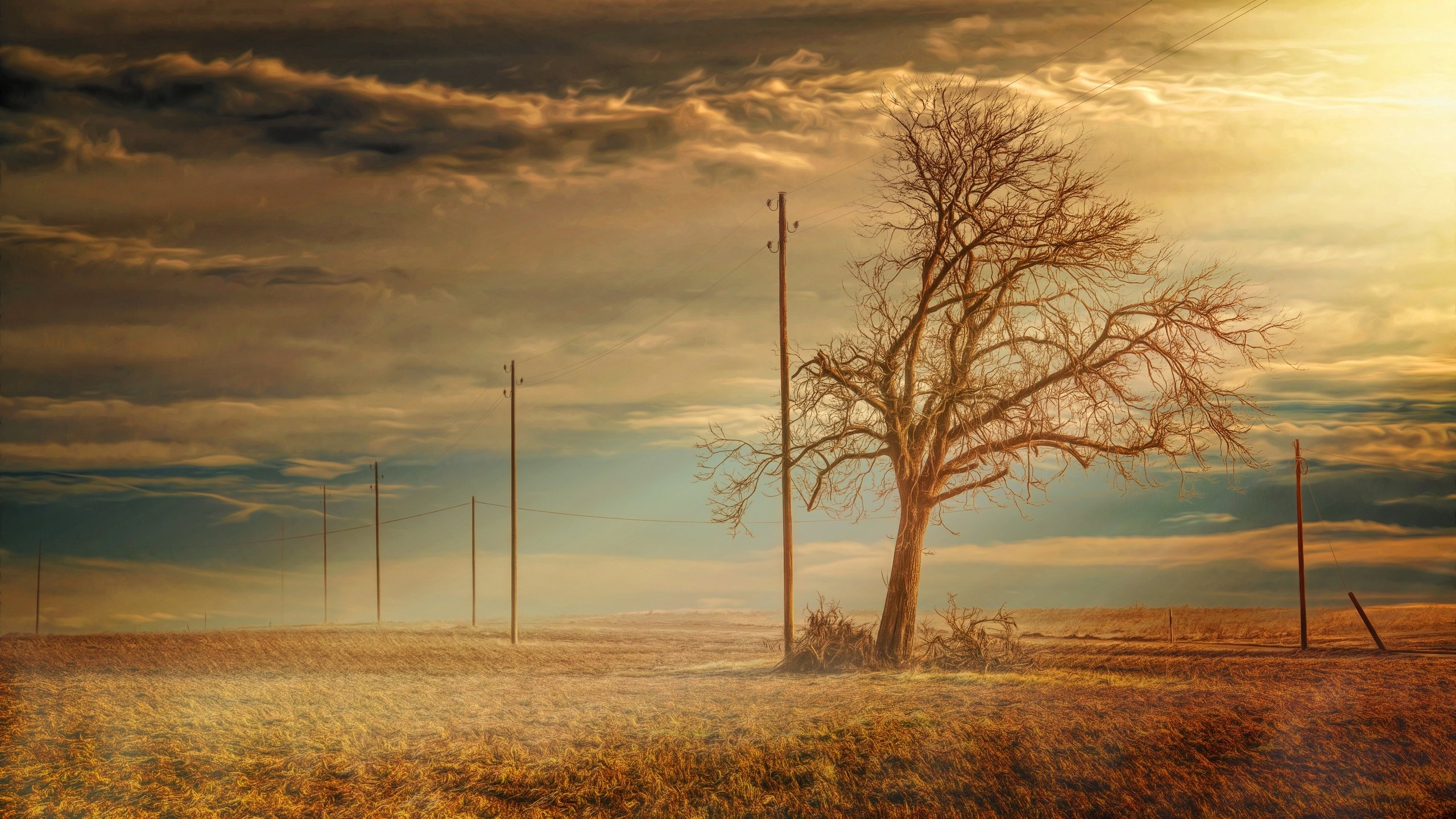 блондинка дерево поле blonde tree field  № 1377201 без смс