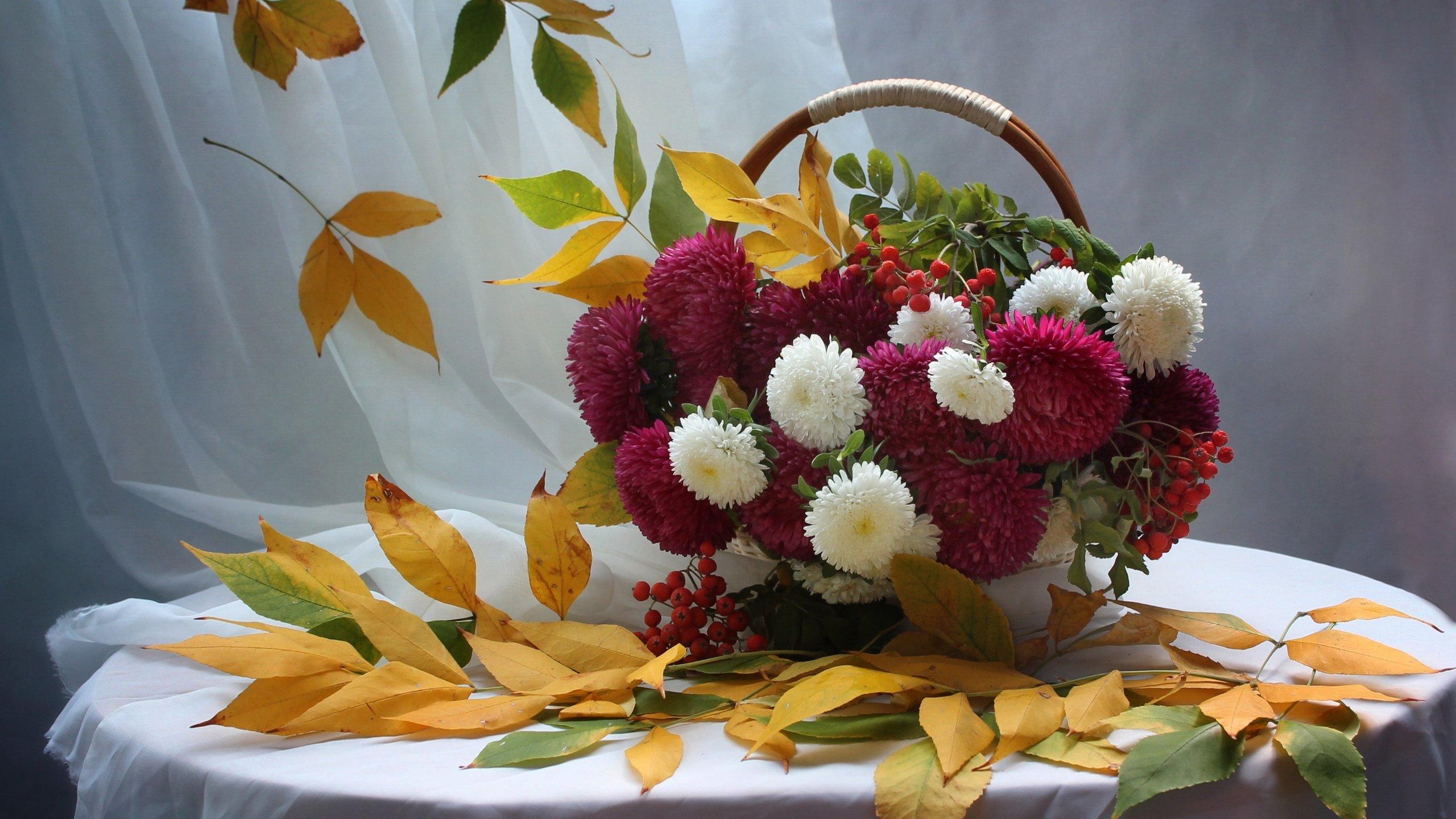 открытки с осенними цветами с добрым утром агентства