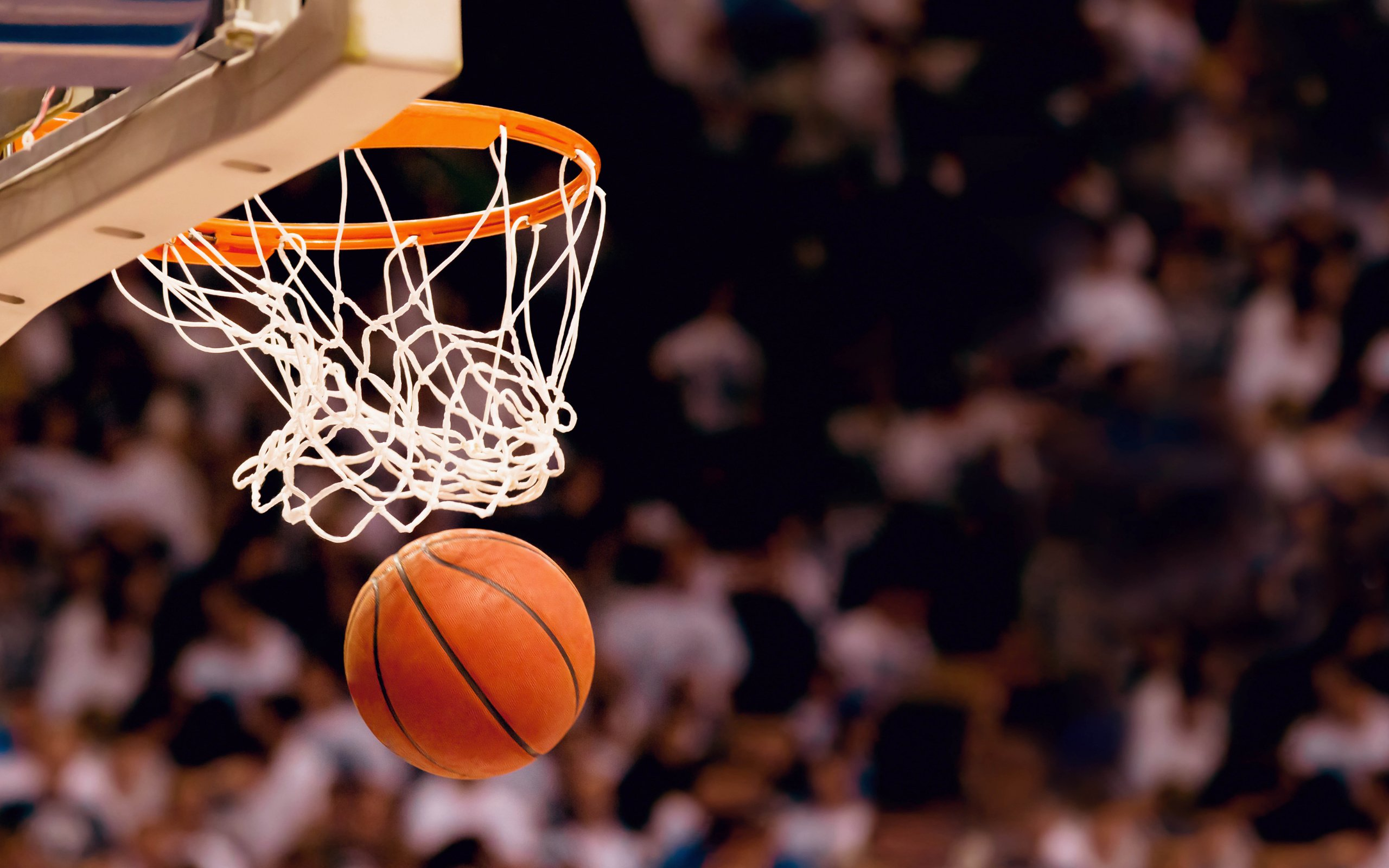 thesis in learning basketball This is a game for learning vocabulary words including basketball, basket, court, outside court, team, dribble, guard, shoot fill in dictation check answers basketball basket court.
