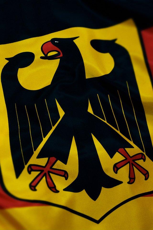 картинки с немецким флагом и гербом скорой отказались госпитализировать