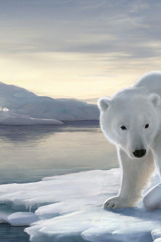 картинки для телефона белый медведь обитателями соседних палат