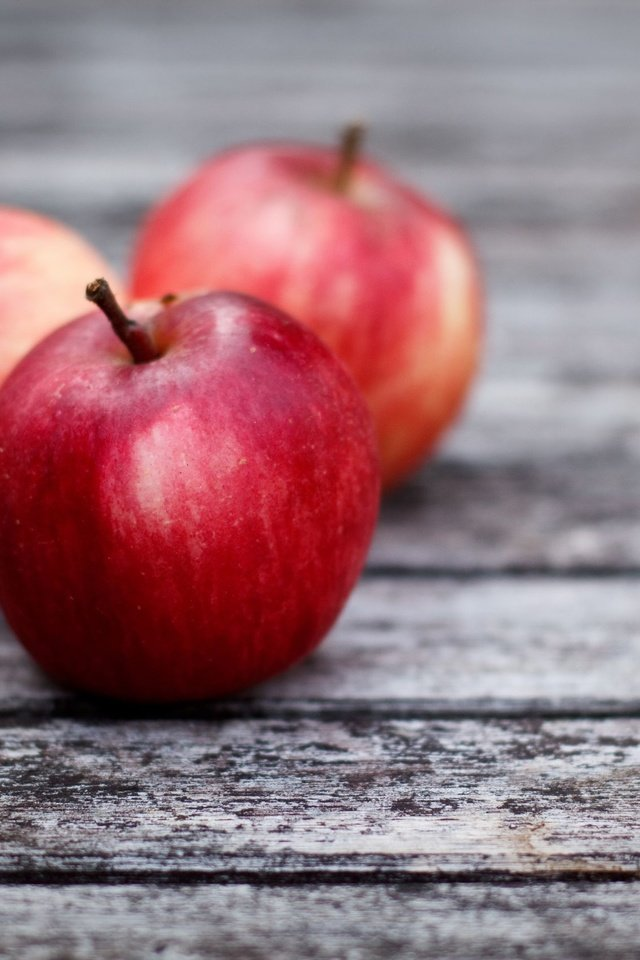 соедините картинки телефона яблока иллюстрацией лозунгу здоровом