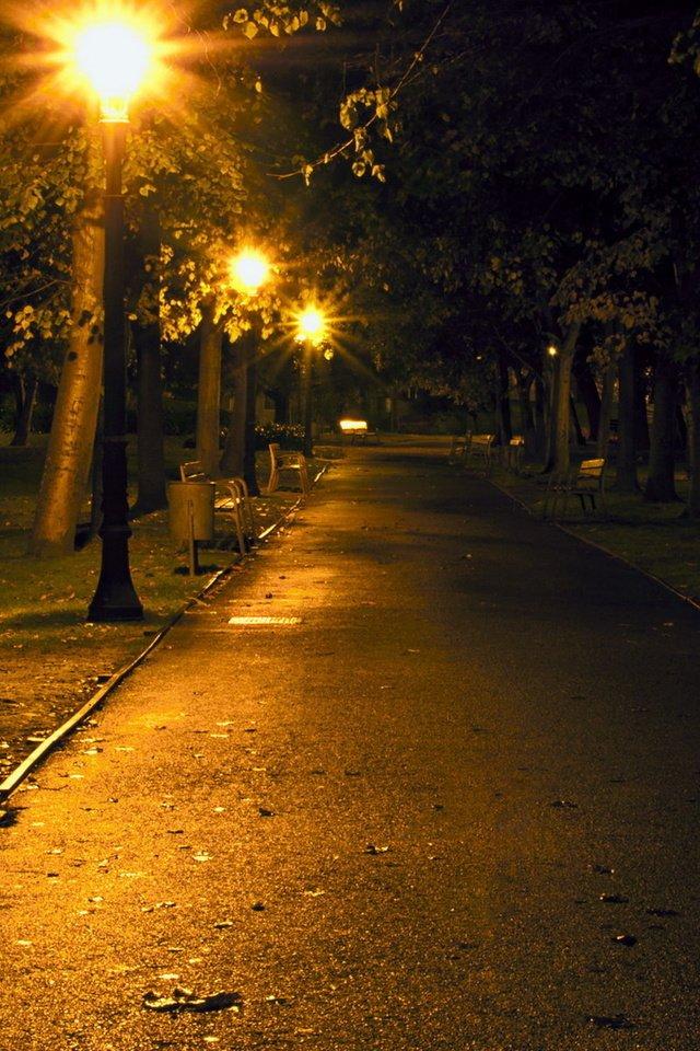 Картинка ночной прогулки