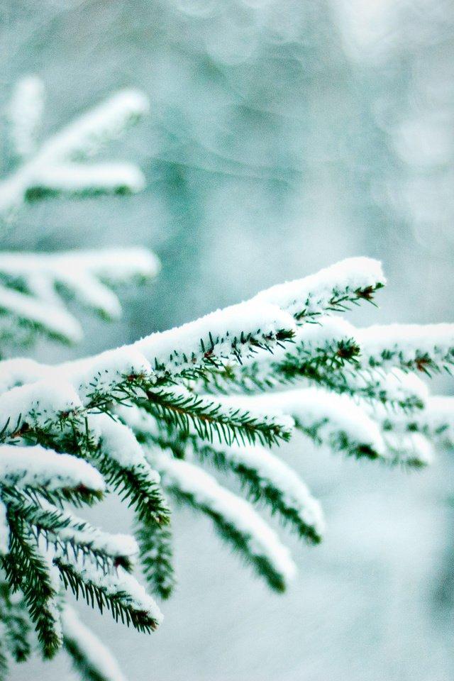 Картинки в телефон снег