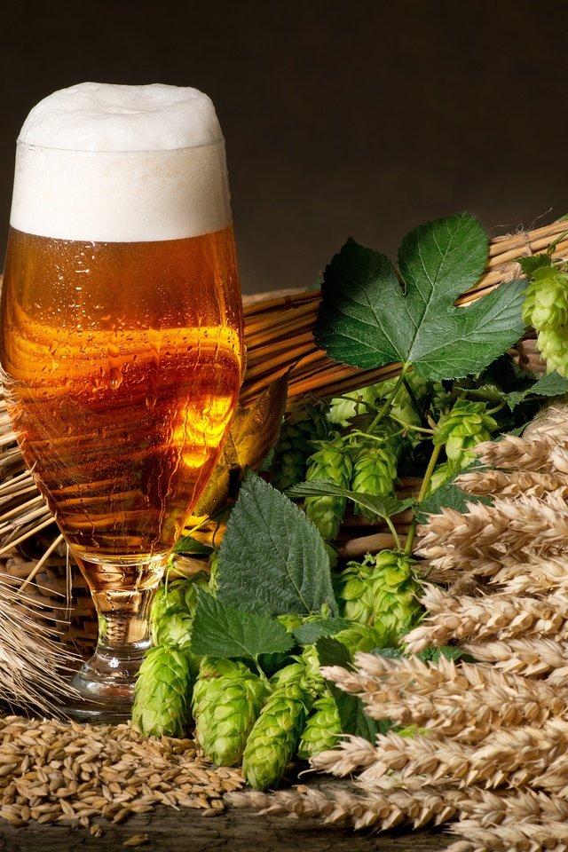 пиво оптом в кегах в краснодаре