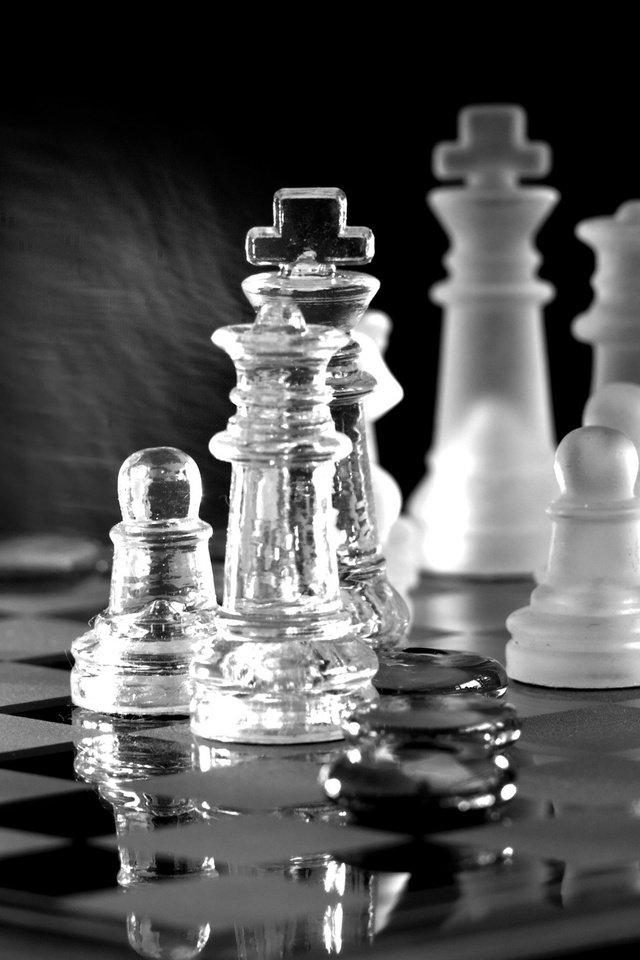 шахматы игра топ