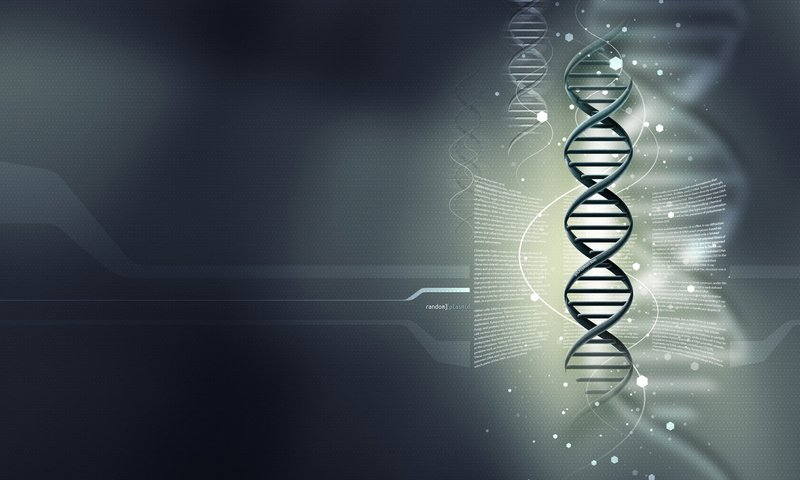 dna technology 21 reviews of dna technology best shop for components at a very best price best shop nasik (nashik), india.
