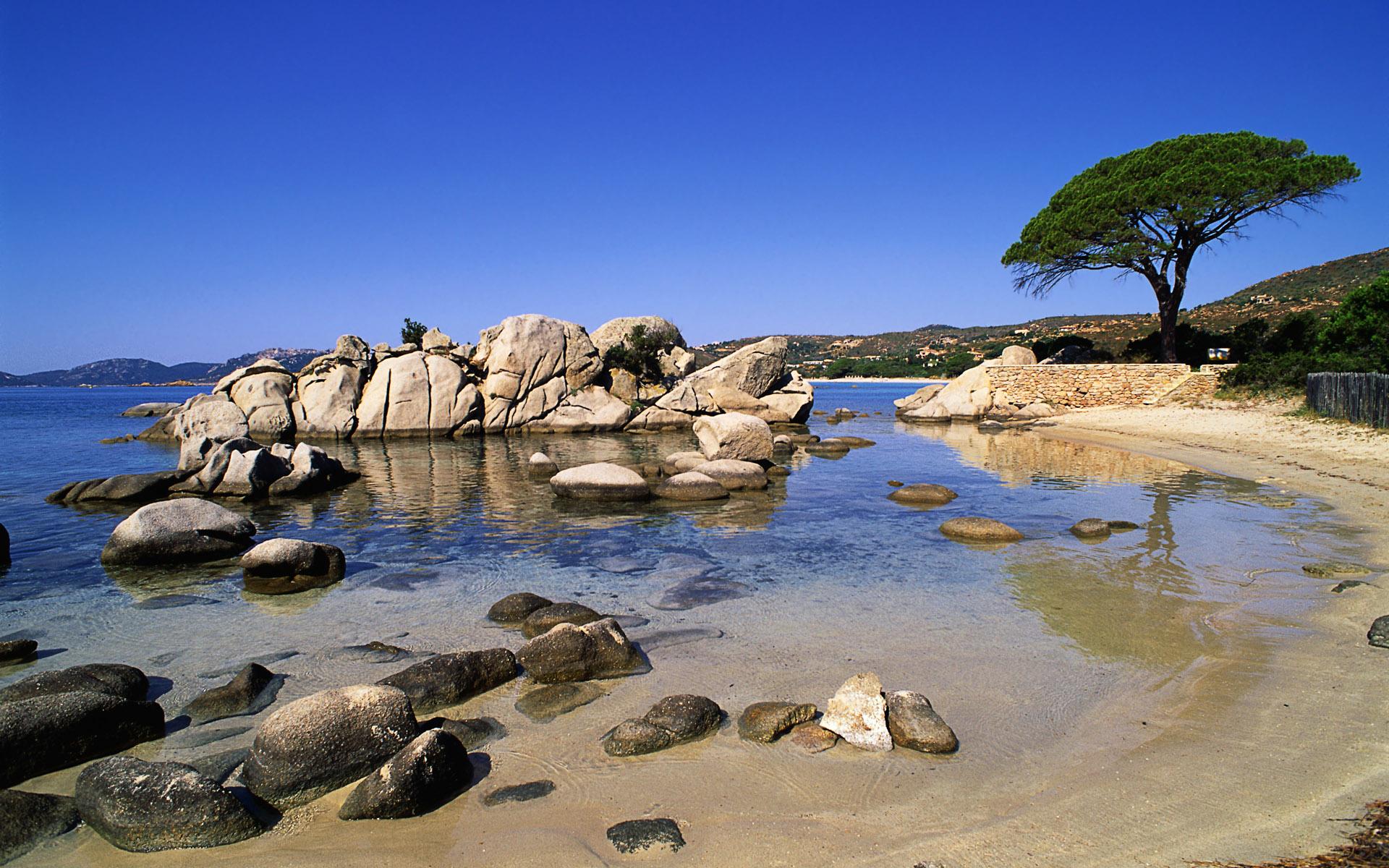 природа море деревья камни скалы  № 38438 без смс