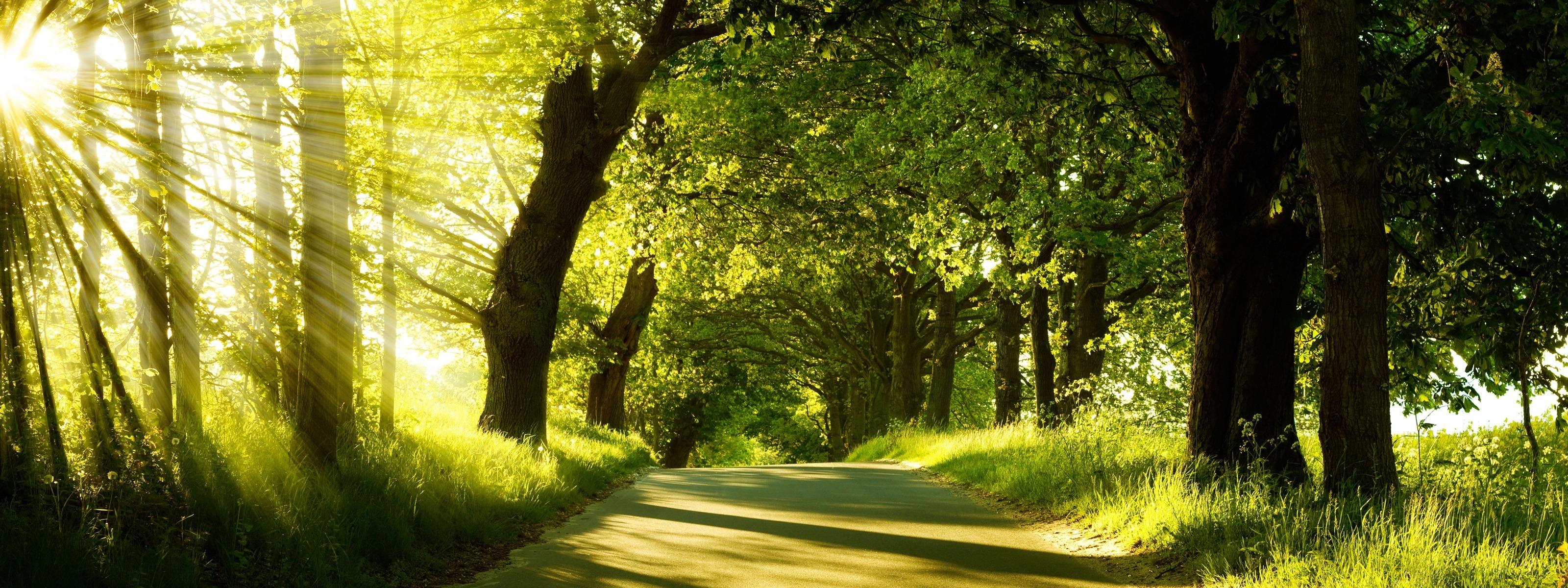 Nature HD Wallpapers, Free Wallpaper Downloads, Nature HD ...
