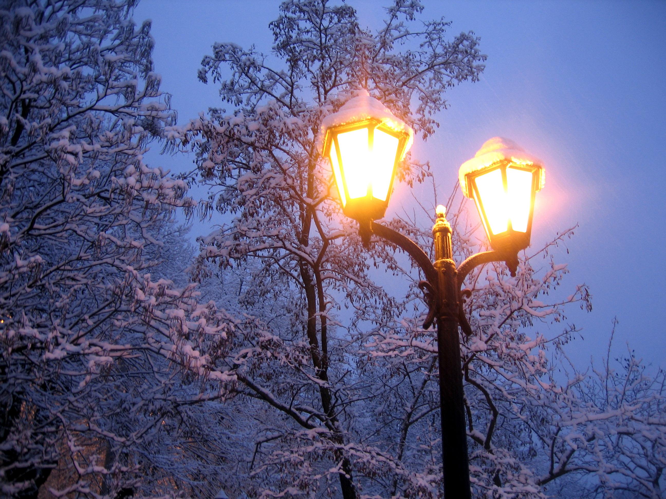 этой картинка вечерний свет как этих