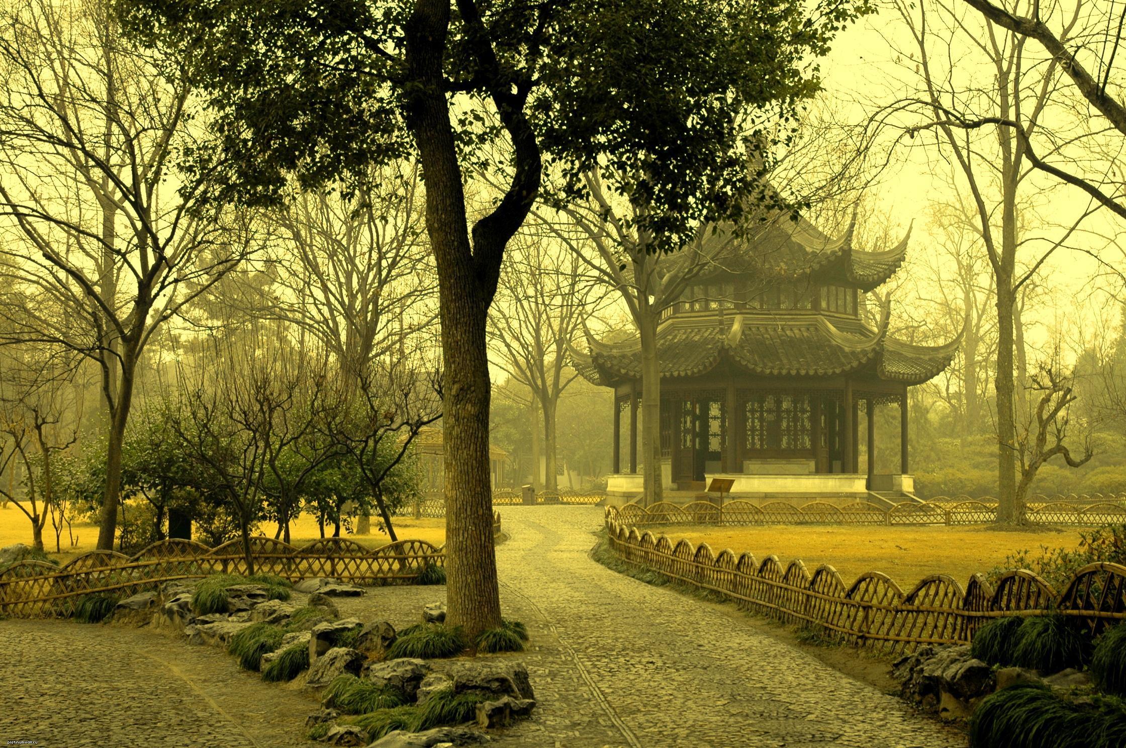страны архитектура природа деревья ночь  № 3716880 загрузить
