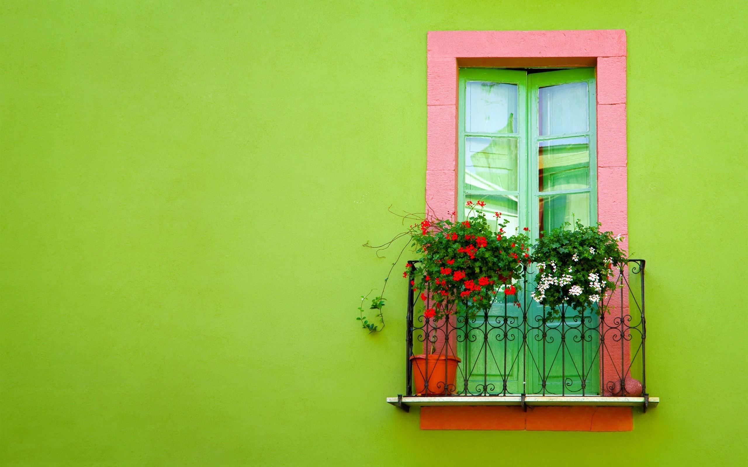 Скачать обои зелёный, стена, окно, балкон, green разрешение .
