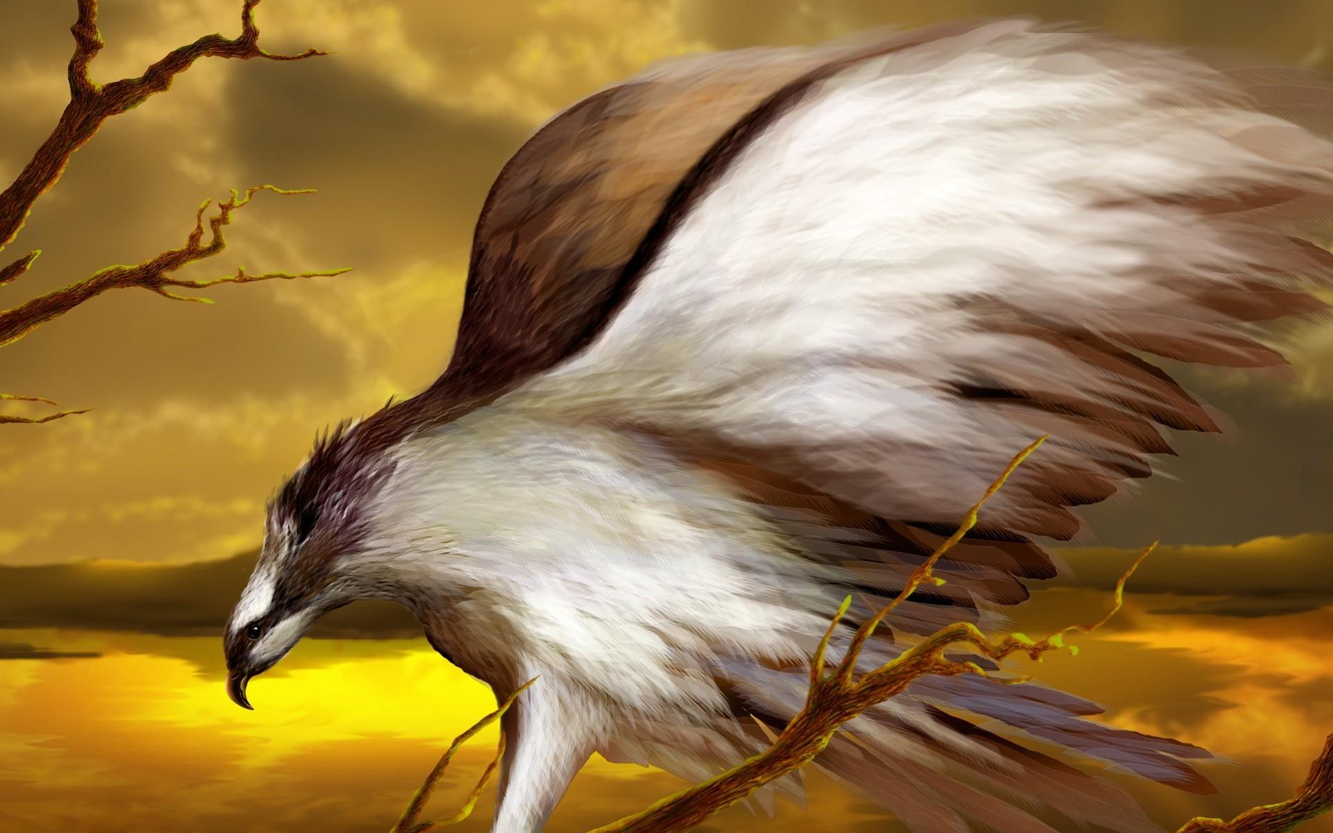 Полюбила, крутые птицы картинки