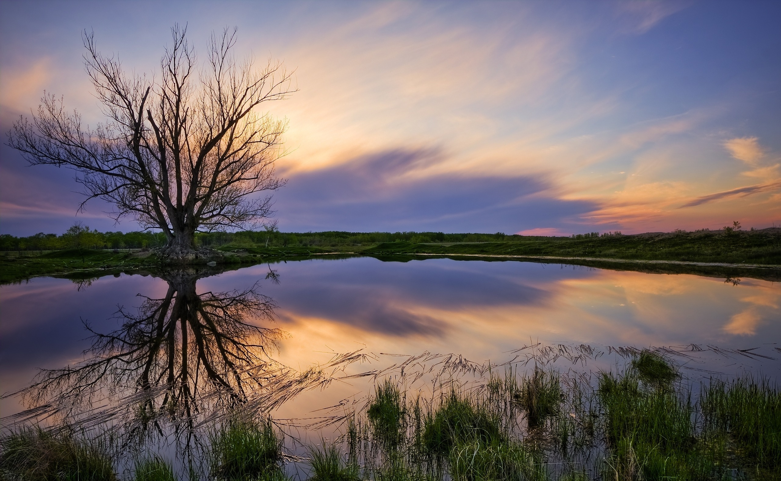 деревья небо озеро  № 3165773 бесплатно