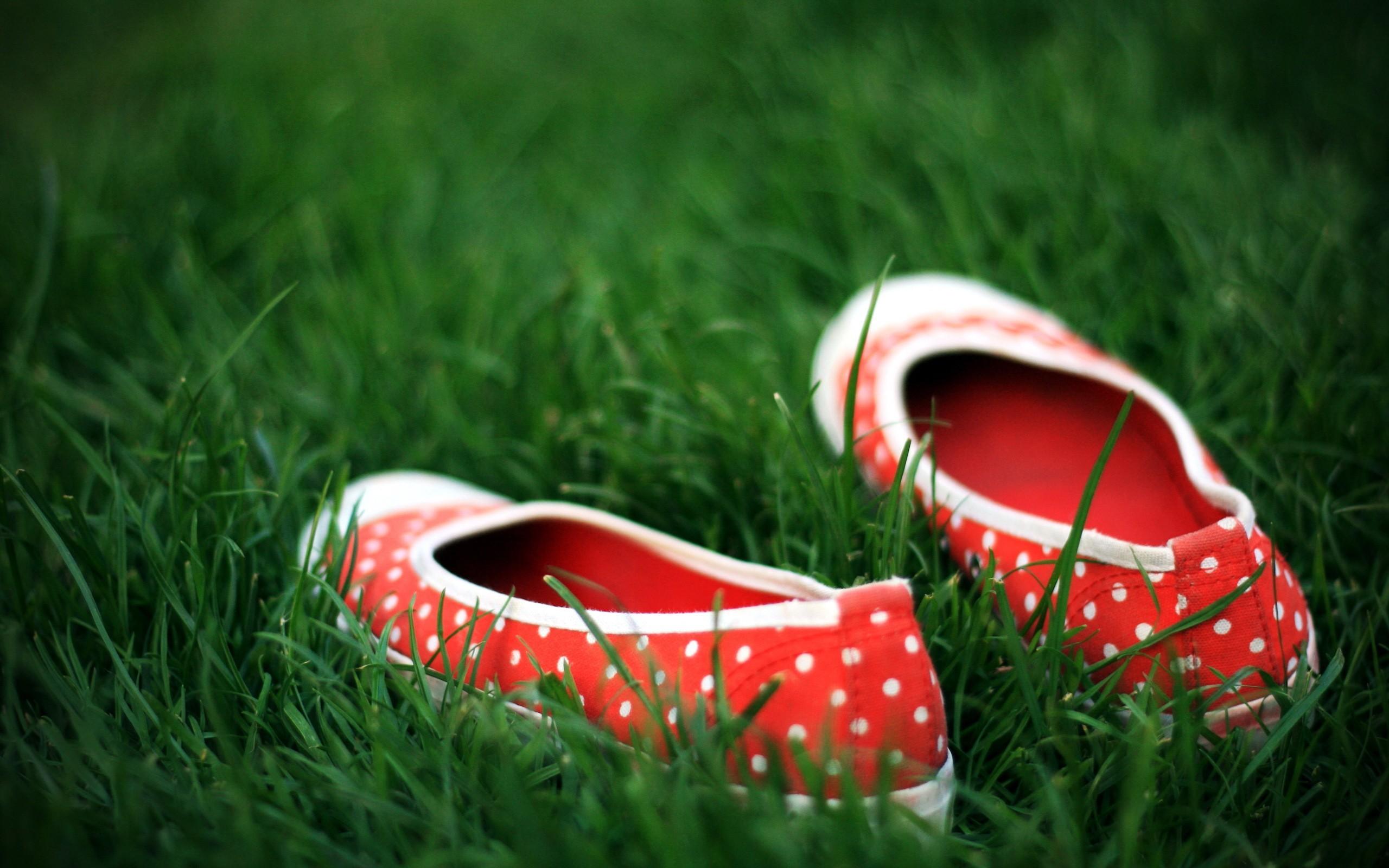 красная обувь  № 1506299 загрузить