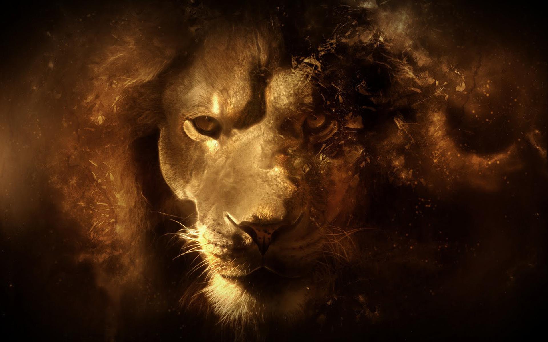 Лев на черном фоне бесплатно