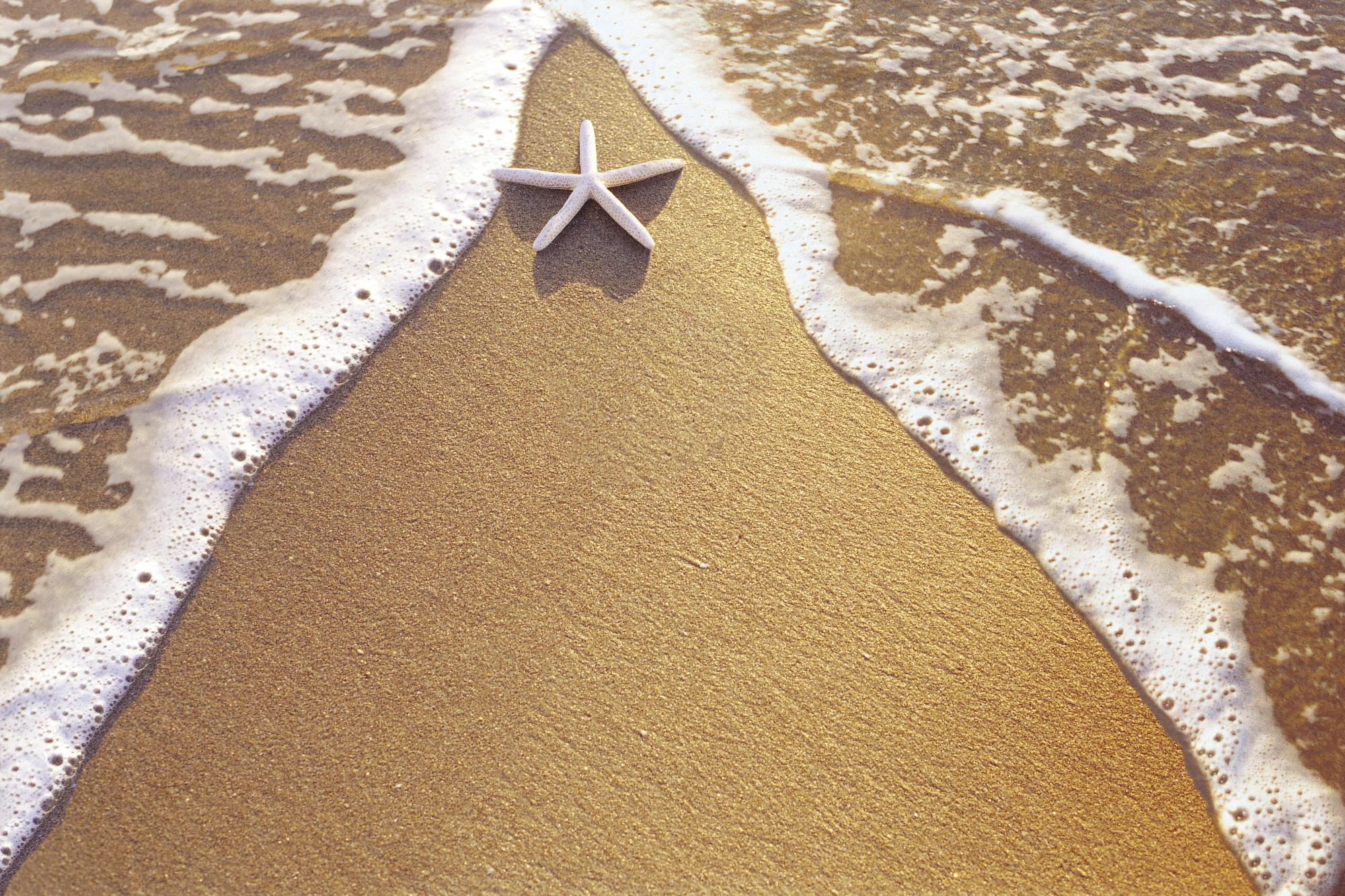 песок пляж лужи небо корабли бесплатно