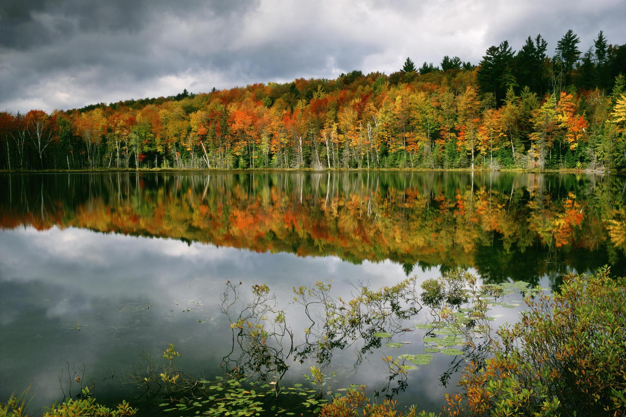 вода озеро осень water the lake autumn  № 1155992 бесплатно